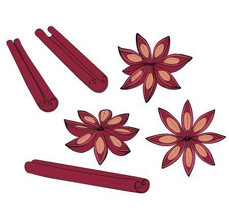 Cinnamon stick and fruit set. Isolated Spices for baking. Vector