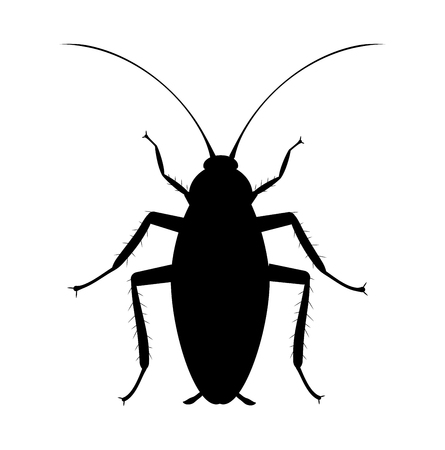 Cockroach Silhouette. Symbol of pets insect control service. Bug spray and insecticide icon