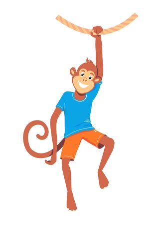 A monkey hangs on one hand on a liana. Sports animal. Isolated vector illustration Ilustracja