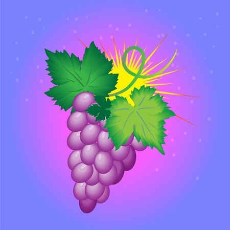 delectable: Bunch of grapes