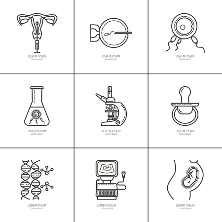 obstetrics: Set obstetrics and pregnancy, in vitro fertilization. Flat line vector icons. Gynecology, fertility, birth of a child health symbols. test for pregnancy, the fetus, the uterus, the embryo.