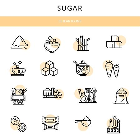 Sugar production, growing and processing. Linear icons Illustration
