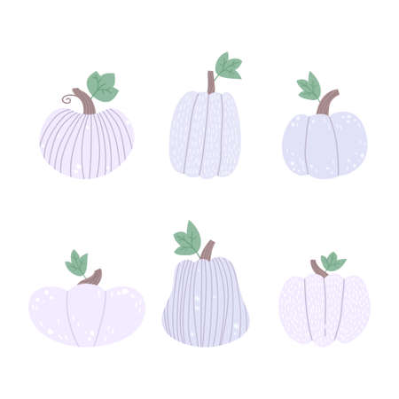 White pumpkins set on a white background.