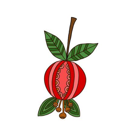 dogrose: Berry dog-rose isolated on white background