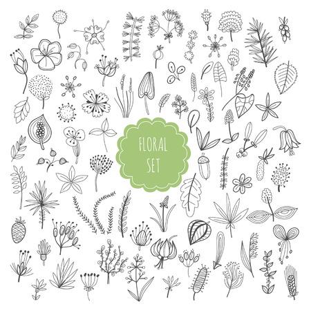 Floral set, planten en kruiden