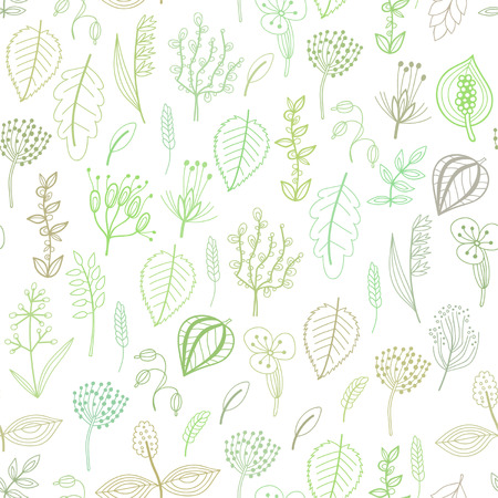 Seamless pattern of plants and herbs, floral background Vector