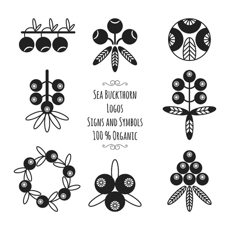 Set of the sea buckthorn signs and symbols for natural cosmetic products