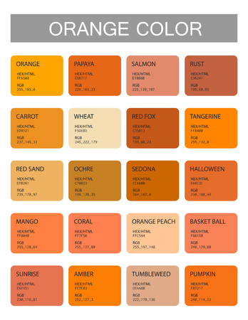 Orange. Color codes and names. Selection of colors for design, interior and illustration. Poster