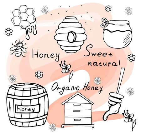 Honey set. Hand drawn doodle beekeeping elements. Vector illustration isolated on a beautiful background.