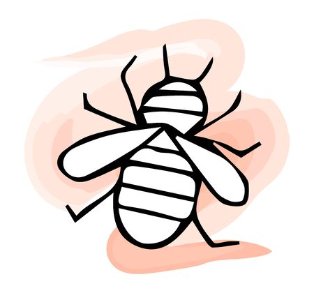 Honey bee. Black and white hand-drawn vector illustration isolated by hand. Ilustrace