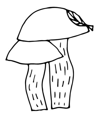 Colorful and fabulous mushrooms, boletus. Hand-drawn illustration for design and for coloring. Illustration