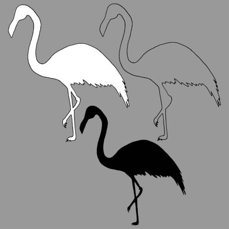Outline and silhouettes of flamingos vector on a gray background. Flamingo bird silhouette and outline illustration. Hand-drawn vector.Perfect for invitations, cards, prints, flyers, posters. Vector Illustratie