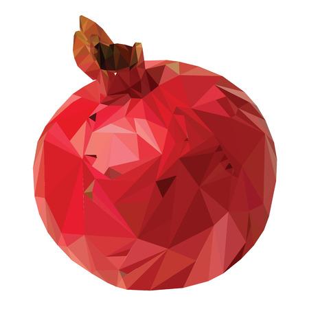 Fruit garnet triangulation vector illustration technique Low Poly Illustration