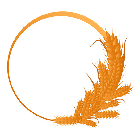 Vector frame decorated with spikelets of wheat Illustration