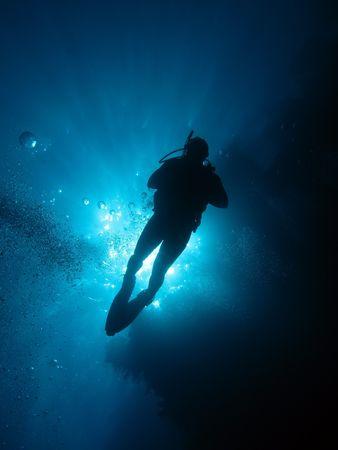 free diver: Scuba Diver                    Stock Photo