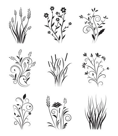 виньетка: Vintage цветочные Set