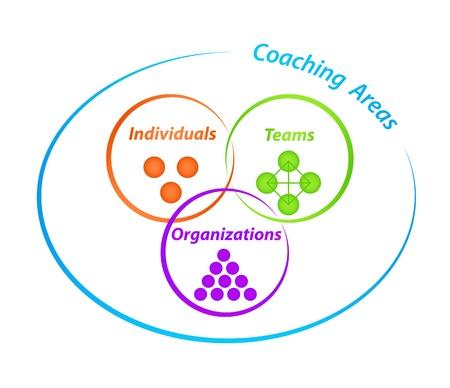 coaching: Coaching zones Diagramme Illustration