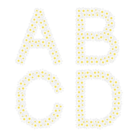 oxeye: Letters ABCD composed from daisy flowers  Complete alphabet in the gallery  Illustration