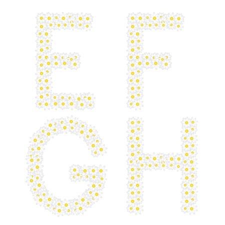 oxeye: Letters EFGH composed from daisy flowers  Complete alphabet in the gallery
