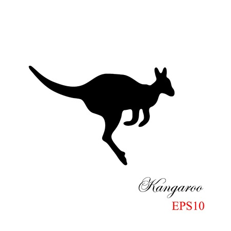 kangaroo white: The black silhouette of a kangaroo on a white background. Element for design and detail