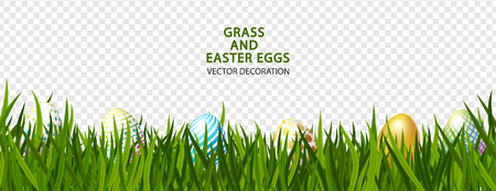 Green grass with Easter eggs on transparent background.Vector illustration.