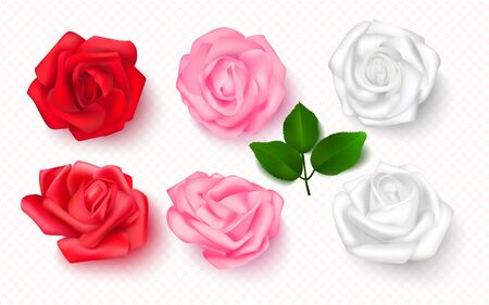 Set of rose buds on a transparent background. 3D flowers for cards, banners, invitations. Vector illustration Иллюстрация