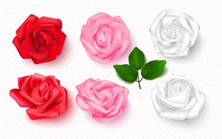 Set of rose buds on a transparent background. 3D flowers for cards, banners, invitations. Vector illustration Illustration