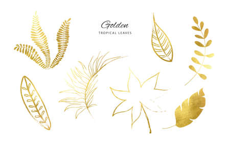 Set of Golden tropical leaves.Decoration elements for your design.Vector illustration