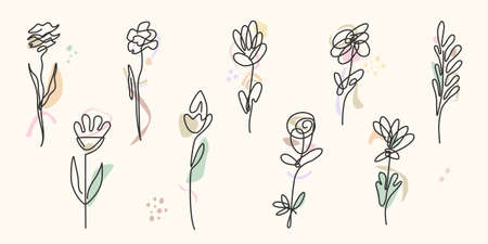 Abstract line continuous flowers. Contemporary drawing in modern cubism style. Botanic elements isolated on colorful pastel textures with shapes. Eco simple logo. Ilustração