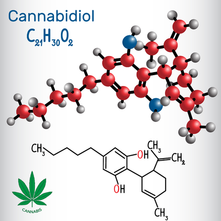 Cannabidiol (CBD) - structural chemical formula and molecule model. Active cannabinoid in cannabis, has anti-psychotic effects vector illustration. Illustration