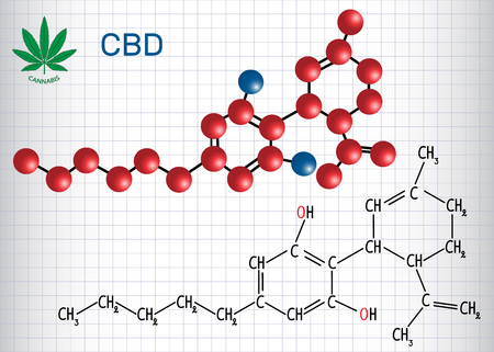 Cannabidiol (CBD) - structural chemical formula and molecule model. Active cannabinoid in cannabis, has anti-psychotic effects. Sheet of paper in a cage vector illustration.
