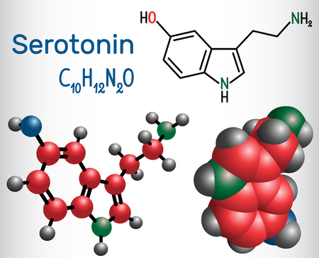 Serotonin molecule, is a monoamine neurotransmitter. Structural chemical formula and molecule model. Vector illustration Ilustracja