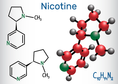 Nicotine Structural chemical formula and molecule model. Vector illustration  イラスト・ベクター素材