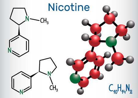 Nicotine Structural chemical formula and molecule model. Vector illustration Illustration