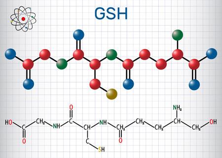 Glutathione Structural chemical formula and molecule model. Vector illustration Illustration