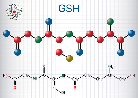 Glutathione Structural chemical formula and molecule model. Vector illustration Stock Illustratie