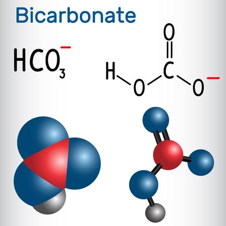 Bicarbonate anion ( HCO3 ) - structural chemical formula and molecule model. Vector illustration.