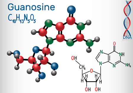 Structural chemical formula and molecule model of Guanosine in a Sheet of paper.