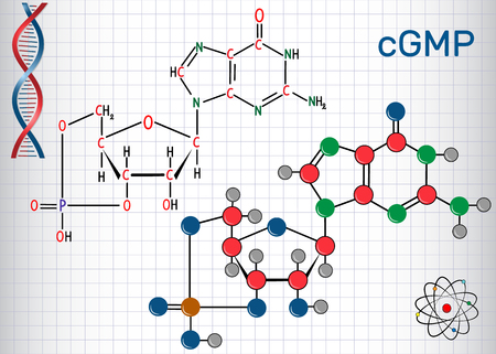 Cyclic guanosine monophosphate (cGMP) molecule. Sheet of paper in a cage. Structural chemical formula and molecule model. Vector illustration.