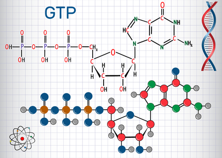 Guanosine triphosphate (GTP) molecule, it is used in synthesis of RNA and as a source of energy for protein synthesis. Sheet of paper in a cage. Structural chemical formula and molecule model. Vector