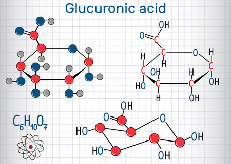 Glucuronic acid molecule, plays an important role in the metabolism of microorganisms, plants and animals. Structural chemical formula and molecule model. Sheet of paper in a cage.Vector illustration