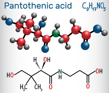 Pantothenic acid ( vitamin B5, pantothenate ) . Structural chemical formula and molecule model. Vector illustration Stock Illustratie