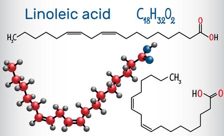 Linoleic acid (LA). Structural chemical formula and molecule model. Vector illustration Stock Illustratie