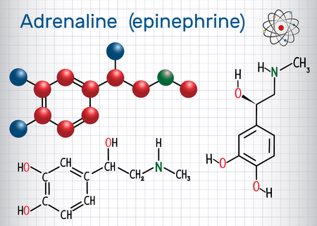 Adrenaline (epinephrine) molecule .  It is a hormone, neurotransmitter, and medication. Structural chemical formula and molecule model. Sheet of paper in a cage. Vector illustration