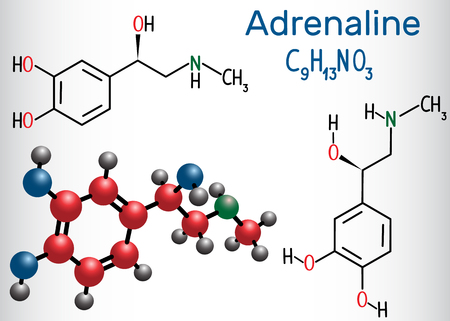 Adrenaline (epinephrine) molecule .  It is a hormone, neurotransmitter, and medication. Structural chemical formula and molecule model. Vector illustration