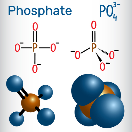 Phosphate anion molecule . Structural formula and molecule model. Vector illustration