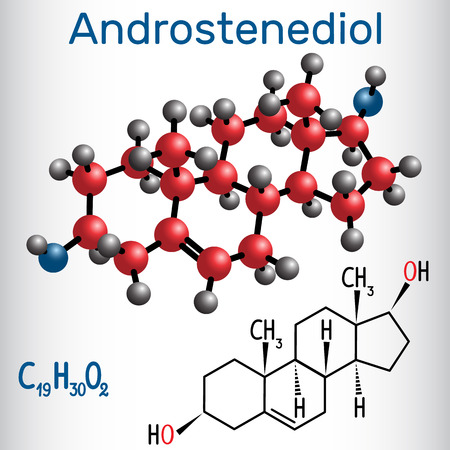 Androstenediol (androgen steroid hormone ) - structural chemical formula and molecule model. Vector illustration