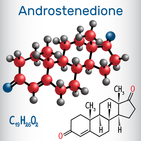 Androstenedione (androgen steroid hormone ) - structural chemical formula and molecule model Vector illustration