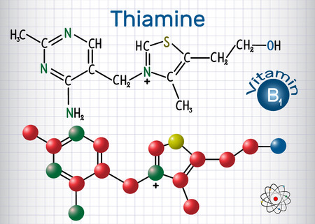 Thiamine (thiamin or vitamin B1) , found in food, used as a dietary supplement and medication.  Structural chemical formula and molecule model. Sheet of paper in a cage.Vector illustration Illustration