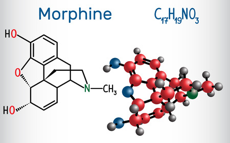 Morphine molecule. It is a pain medication of the opiate. Structural chemical formula and molecule model. Vector illustration Illustration